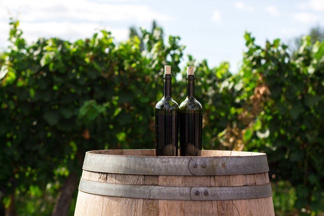 wijnkoelkast onderhouden